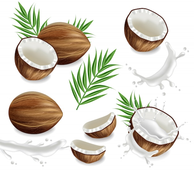 Kokosnüsse mit spritzensammlung