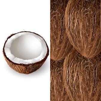 Kokosnuss-abbildung