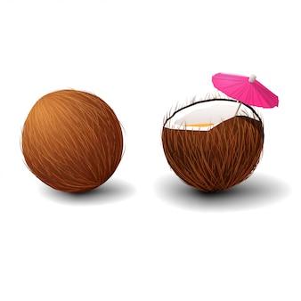 Kokosnuss getrennt auf weißem hintergrund