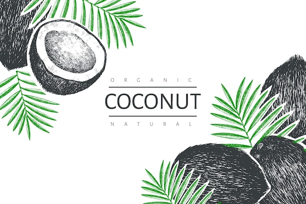 Kokosnuss mit palmblattschablone. hand gezeichnete lebensmittelillustration. exotische pflanze im gravierten stil. weinlese botanischer tropischer hintergrund.