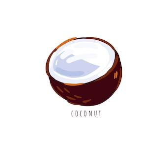 Kokosnuss-vektorillustration isoliert auf weiß hälfte der kokosnuss auf weißem hintergrund