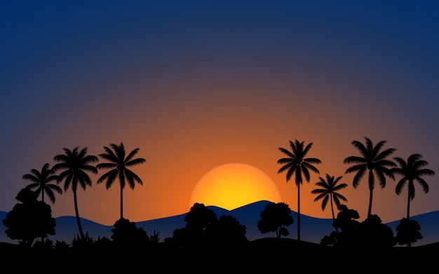 Kokosnussbaum im wald mit glühender sonne