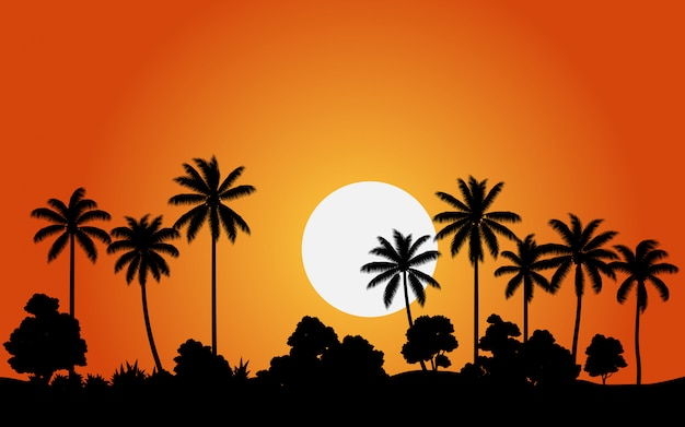 Kokosnussbaumsonnenuntergang mit wald