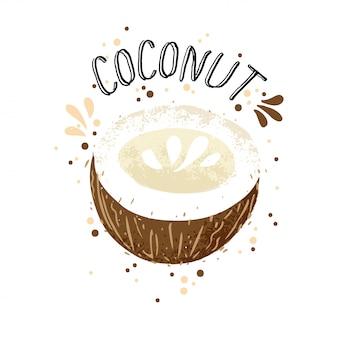 Kokosnussillustration des vektorhandabgehobenen betrages. brown-kokosnüsse mit dem saftspritzen lokalisiert auf weißem hintergrund.