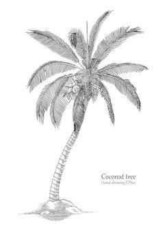 Kokospalmenhand, die gravurart zeichnet