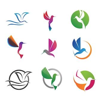 Kolibri-logo und symbolvektorbild
