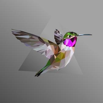 Kolibri niedrig poly