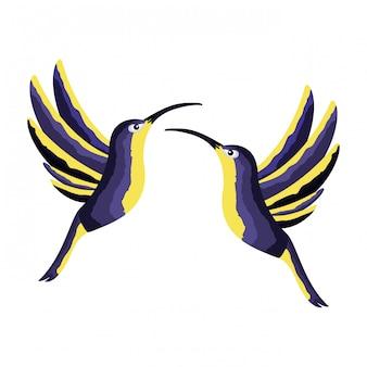 Kolibris, die tropisch auf weißem hintergrund fliegen