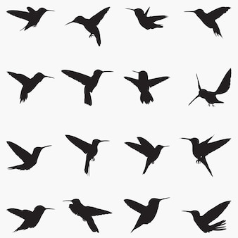 Kolibris silhouettenillustration