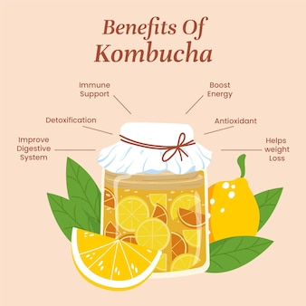 Kombucha tee profitiert illustration