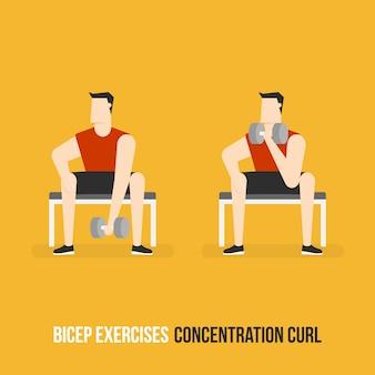 Konzentrations-curl-demostration