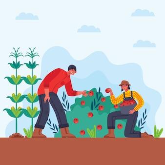 Konzept der biologischen landwirtschaft des mannes und der frau