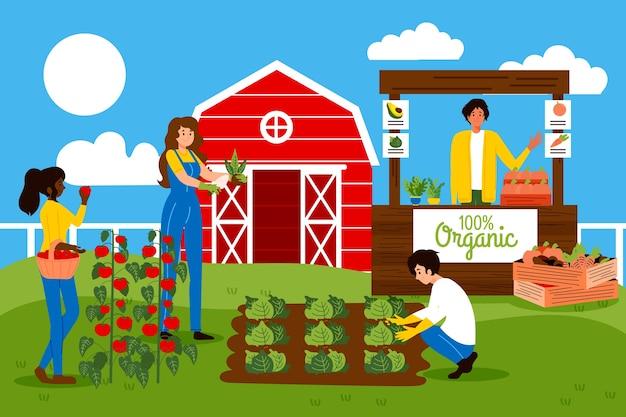 Konzept des biologischen landbaus mit den leuten, die gemüse anbauen