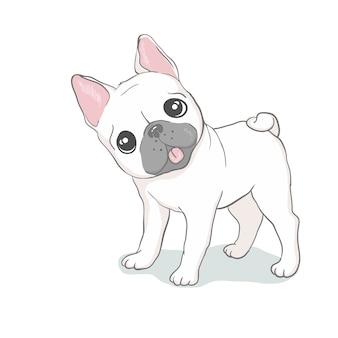 Kopf der französischen bulldogge lokalisiert. vektor-illustration