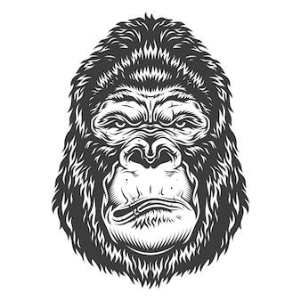 Kopf des gorillas