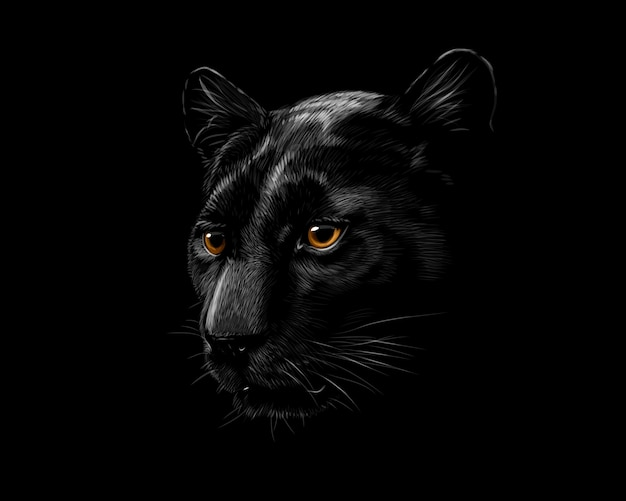 Kopf eines schwarzen panthers lokalisiert auf einem schwarzen hintergrund. vektorillustration