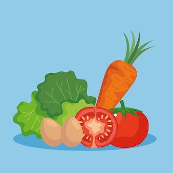 Kopfsalat eier tomaten und karotten