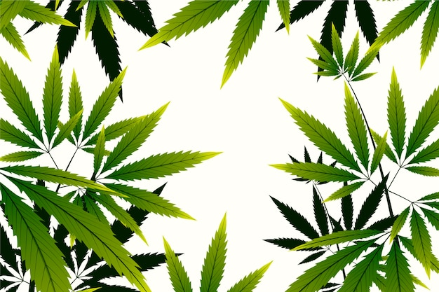Kopieren sie den botanischen cannabishintergrund des weltraums