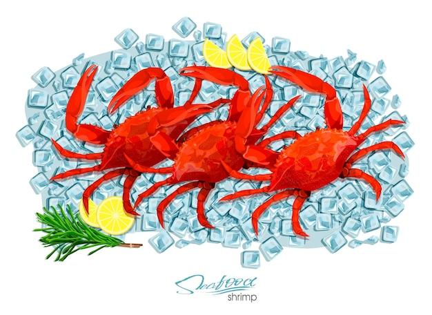 Krabben mit rosmarin und zitrone auf eiswürfeln. vektorillustration im cartoon-stil. produktdesign für meeresfrüchte. bewohnende tierwelt der unterwasserwelt. essbare meeresfrüchte.