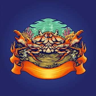 Krabbenlebensräume illustration