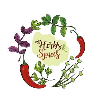 Kräuter und gewürze pflanzen und organessen