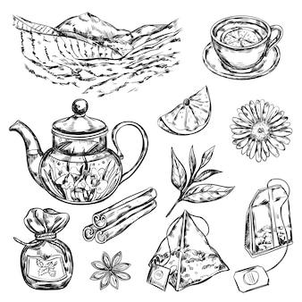 Kräutertee teekanne