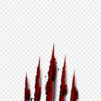 Krallen kratzen rotes blut