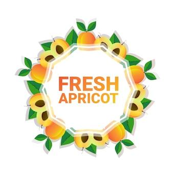 Kreis-kopienraum der aprikosenfrucht bunter organisch über weißem musterhintergrund, gesundem lebensstil oder diätkonzept