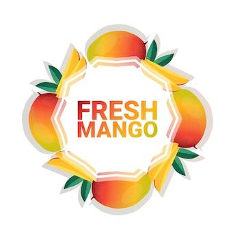 Kreis-kopienraum der mangofrucht bunter organisch über weißem musterhintergrund, gesundem lebensstil oder diätkonzept