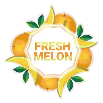 Kreis-kopienraum der melonenfrucht bunter organisch über weißem musterhintergrund