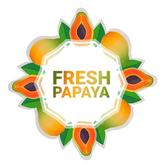 Kreis-kopienraum der papayafrucht bunter organisch über weißem musterhintergrund, gesundem lebensstil oder diätkonzept