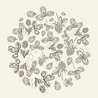 Kreismusterbündel des hopfengekritzels mit sich wiederholenden schönen beeren auf weißer oberflächenhand, die vektorillustration zeichnet
