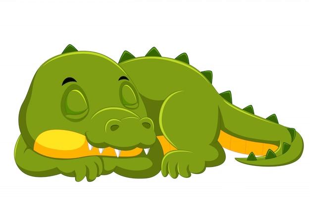 Krokodil, das auf weißem hintergrund schläft