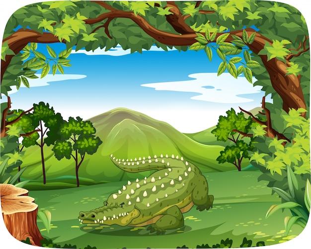 Krokodil in der naturszenenillustration