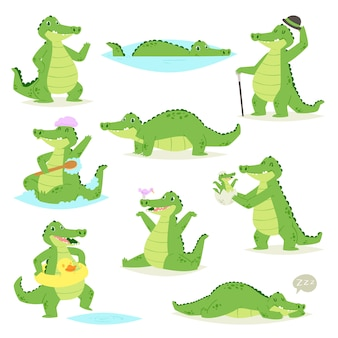 Krokodilkrokodilcharakter des grünen alligators schlafend oder spielend illustration animalischer kindischer satz des lustigen raubtiers auf weißem hintergrund