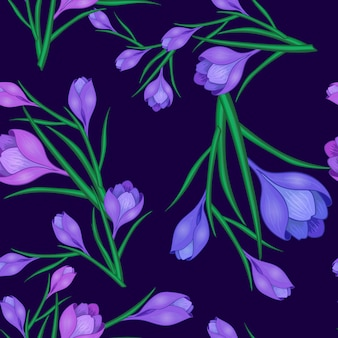 Krokusblüten dunkelblau