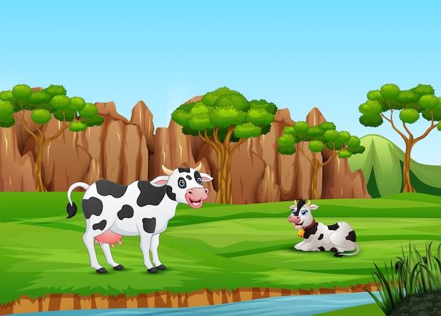Kühe der karikatur zwei, die auf dem feld enyoying sind