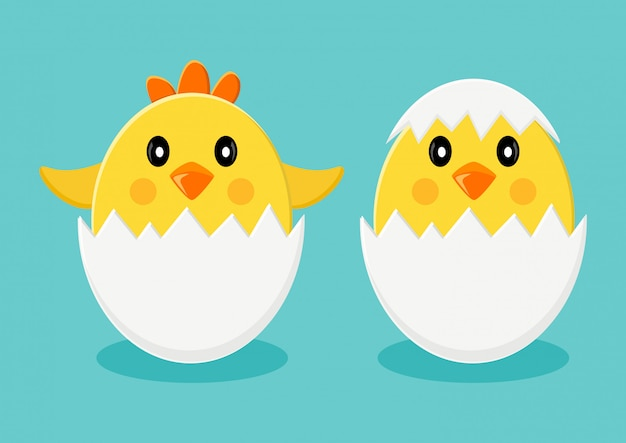 Küken in eierschalenillustration