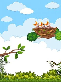 Küken und sein muttervogel in der natur