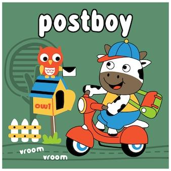Kuh die lustige tierkarikatur des postboys