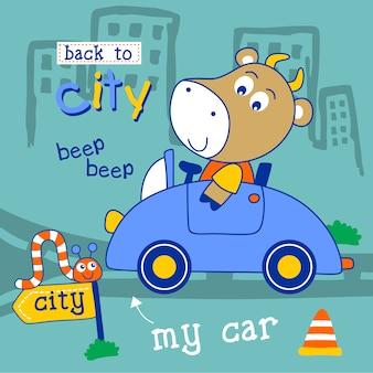 Kuh fährt ein auto