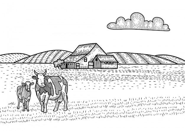 Kuh und kalb grasen auf der wiese. farm barn auf dem hintergrund. hand gezeichnete skizzenillustration im gravurstil. landschaft landschaft.