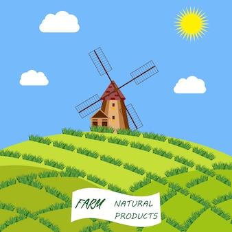 Kultureller und besichtigungssymbolrahmen holland-reise mit hölzernen klötzen und windmühlen der tulpen