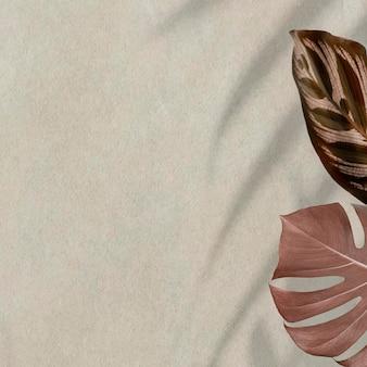 Kupferne monstera-blätter mit kopienraum