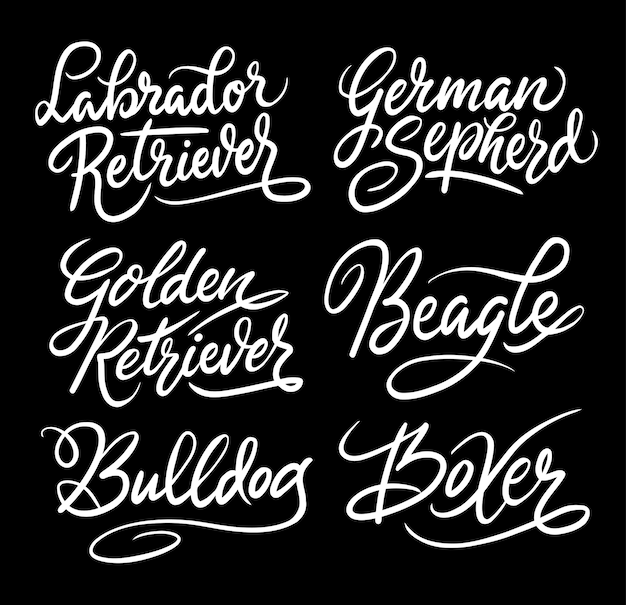 Labrador retriever und beagle haustier hund handschrift kalligraphie