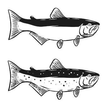 Lachsfischillustration auf weißem hintergrund. element für logo, etikett, emblem, zeichen. illustration