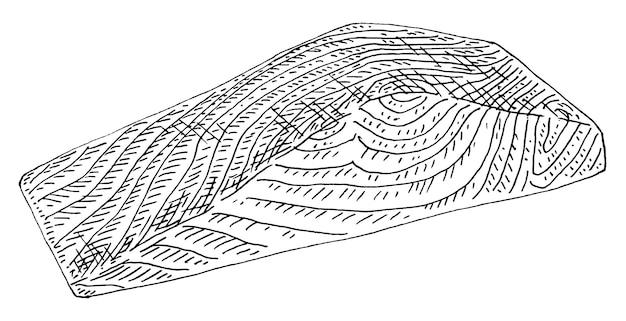 Lachsscheibe auf weißem hintergrund vintage-vektor-gravur monochrome schwarze illustration