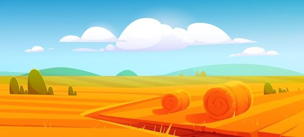 Ländliche landschaft mit heuballen auf landwirtschaftlichem feld