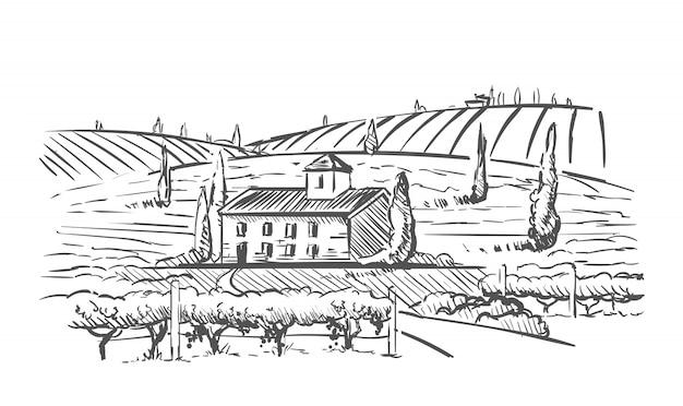 Ländliche landschaft mit villa, weinplantage und hügeln.