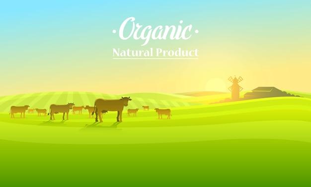 Ländliche landschaft und kühe. landwirtschaftliche landwirtschaft. illustration. plakat mit wiese, landschaft, retro-dorf für infografik, websites.